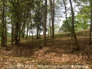 .799 ± Acre Waterview Building Lot in Wells Landing Estates Subdivision with Lot 15s, .388 ± Acre Lot for Septic System Location - BUILDING SITE ABOVE FLOOD PLAIN