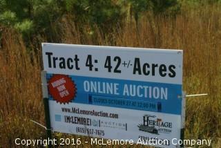 Tract 4: 42± Acres