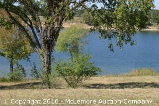 1.900 ± Acres with 203' ± Frontage on the Tennessee River