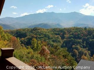 1.00± Acre Corner Lot Zoned C-1 Commercial and 4,000± sf Log Home with Adjoining Lot in Gatlinburg, TN