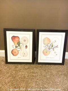 Framed Prints - Golden Delicious Apples & Bosc Pear - (2)
