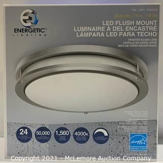 "Energetic Lighting 14"" LED Flush Mount - NEW (open box)"