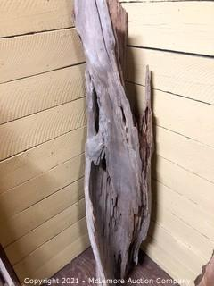 Red Cedar Drift Wood