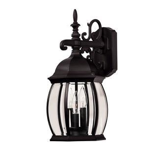 Savoy House Exterior Collections Wall Mount Lantern
