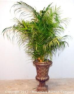 Large Planter with Dried Leaves