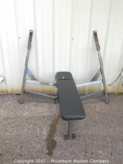 Hammer Strength Bench Press Bench