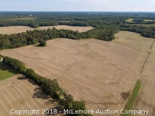 49.90± Acres on Oak Grove Ln - Auction Tracts 20 and 21 Combined - NOW SELLING ABSOLUTE