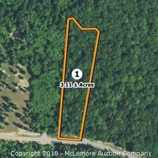 3.11± Acre Building Lot in Eagle Bluff Estates