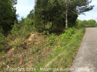 6.56± Acres, Tract 8 of 9, Part of 61.11± Acres in 9 Tracts on Mt Carmel Rd and Firetower Rd in Benton County - Selling Subject to Timber Deed - RESERVE MET - NOW SELLING ABSOLUTE