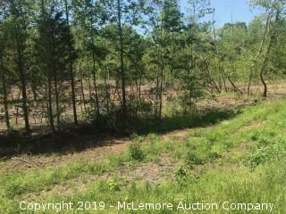 9.76± Acres, Tract 4 of 11, Part of 95.9± Acres in 11 Tracts on Birdsong Rd in Benton County