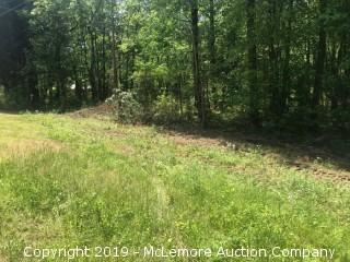 9.62± Acres, Tract 8 of 11, Part of 95.9± Acres in 11 Tracts on Birdsong Rd in Benton County