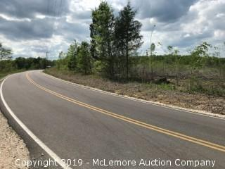 4.29± Acres, Tract 4 of 8, Part of 76.7± Acres in 8 Tracts on Birdsong Rd in Benton County - RESERVE MET - NOW SELLING ABSOLUTE