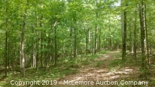 224± Acres - Timber Only