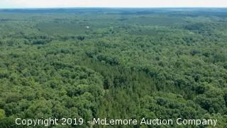 224± Acres - Land and Timber