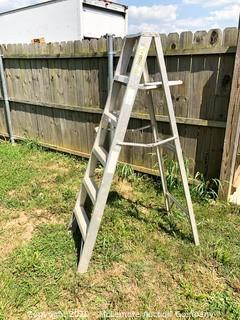 Aluminum 6' Step Ladder